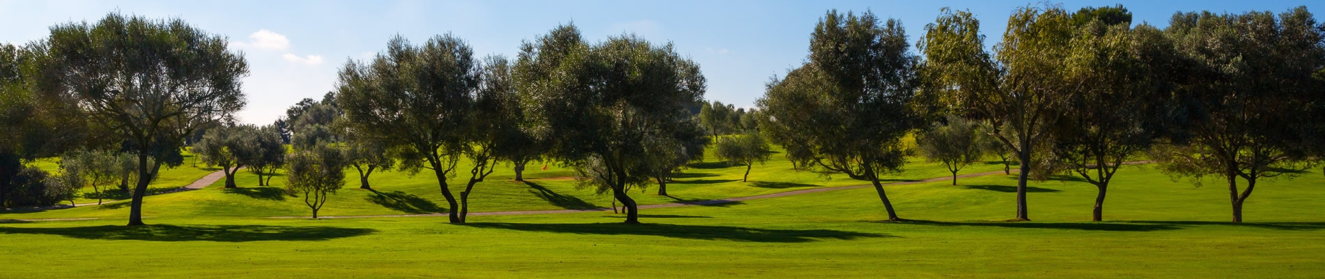 Perfect Mallorca Golf