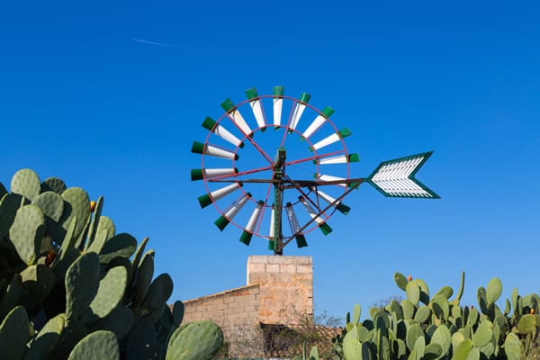 Campos - Perfect Mallorca