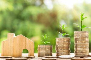Immobilien-Markt ist eine zarte Pflanze